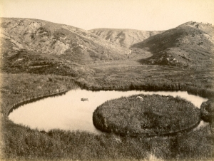William Williams, Floating Island, Whakaki c.1889 Vintage albumen print, BH Collection